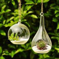 2014 New Arrival fashion transparent hanging glass vase creative home decoration Succulent Terrarium Housewarming Gift