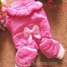 teddy bear clothing promotion