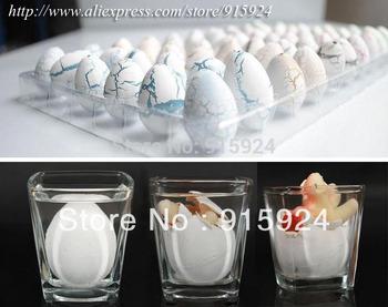 60pcs/lot Novel Water Hatching Inflation Dinosaur Egg Watercolor Cracks Grow Egg Educational Toys Interesting Gift Free Shipping