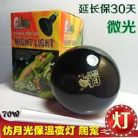 Pet tortoise mosquera lizard chambrays tortoise turtle moonlight heated eye-lantern insulation 70w(E27)