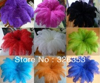 """Free shipping Wholesale 50PCS 20 -22 """"Rose Red Ostrich Feather"""