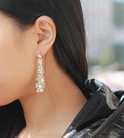 Tassel, hyperbole  pearl long  flowers, earrings