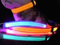 Led pet flash luminous led collar dog cat collar pet belt