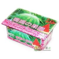 Удобрение для растений Xiaohuami 2bags