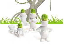 mini plant promotion