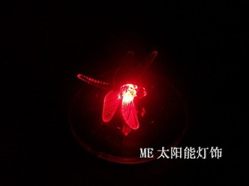 floating pool decorations LED pool dragonfly lamp free shipping