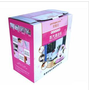 Hot steam clean machine brush facial steam cleaner brush cleaning machine ultrasonic electric iron