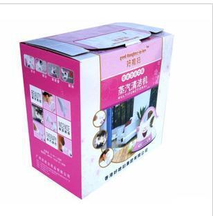 Hot steam clean machine brush facial steam cleaner brush cleaning machine ultrasonic electric iron