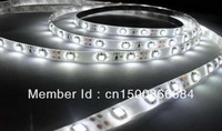 Free shipping 3528LED Strip SMD Flexible light 60led/m 300 5M waterproof warm/white/red/green/blue/yellow String