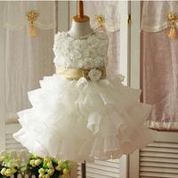 Free Shipping 2014 New Fashion Children Costume Kids Dance Clothes Vestidos Infantis Evening Dresses Princess Flower Girl Dress