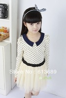 5PCS/LOT&Free Shipping!snow white kids clothes summer 2013 new kids clothes party dresses tulle flower girl dress pattern