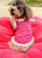 Free Shipping new arrival dog vivian high quality lace shirt Dog,Cat,Pet Clothes summer lace shirt Size XXS,XS,S,M,L Pet vest
