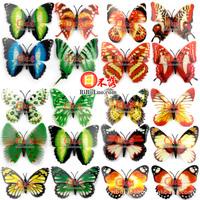 Free shipping 8-9.5cm width Vivid Multi Color Noctilucent Luminous Butterfly Fridge Magnet for Home Decor 10pcs/lot