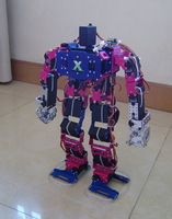 Free shipping , 19 degrees of freedom humanoid robot, walking robot, fingers movable