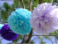"Free Shiping 100 pcs 10"" Tissue Paper Pom Poms Party Wedding Shower Flower Balls Decoration 14 Colors"