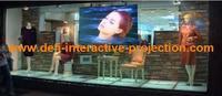 DEFI 4 sqm transparent/dark gray/ gray/white rear projection film / 0.66m*1.524m x 4 colours