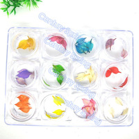 60pcs dried leaf for 3D nail art decoration dry flowers 12 colors in case Rhinestones & Decorations