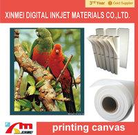270gsm waterproof  matte polyester inkjet canvas, 24''*18m, factory supply
