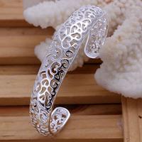 Alex and Ani Charms Women Bracelet Wholesale High Quality Fashion Jewelry 925 Silver Bracelets SPCB144