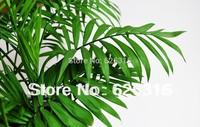 20pcs/lot GOLDEN YELLOW PALM SEEDS Chrysalidocarpus seeds POT TREE PLANT GARDEN BONSAI TREE SEED DIY HOME PLANT