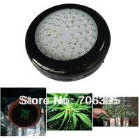 Hydroponic Lights&Lighting Blackstar UFO led grow light 150W with 50pcs 3W grow lights lamp for Midicinal Plants flowering