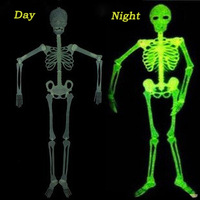 Freeshipping! Halloween Decoration The Big Bang Theory Skeleton Luminous Haunted House 0.42Inches And 1.18Inches