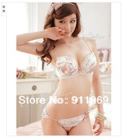 Free shipping  pink coffee color sexy flowers chiffon lace bra set, women's underwear sets, push up bra 34B / C / D cup