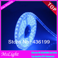 [MsLight] 30Leds/M 12V IP67 Led Strip Waterproof  3528 SMD Warm white /Cold white for Garden / Outdoor Decoration , Neon