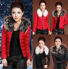 ladies winter coat price