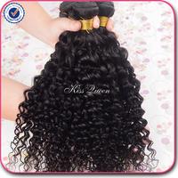 Malaysian virgin hair water wave 3 pcs lot free shipping 5A virgin malaysian hair length 8''-30'' malaysian curly virgin hair