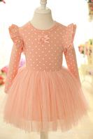 Angel Wings Sweet dress girls princess dress,dress lace,2-6 years children dress,fashion, children suit ,free shipping