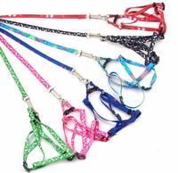 10pcs/lot adjustable 1cm print rope small dog leash nylon Mixed colors