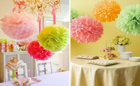 Free shipping  20Pcs 35cm(14inch)  Tissue Paper Pom Poms Christening  Wedding Party Craft Paper Flower For Wedding Decoration
