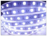 LED Flexible  Strip 60led per meter  IP68 Waterproof(plastic tube) 5050SMD 300pcs  Cool White -5 meters