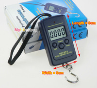 Hanging Scale Luggage Fishing 40Kg /10g Digital Pocket Weight Kg Lb OZ ( No Backlight )