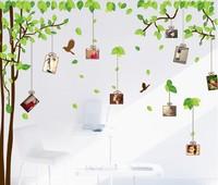 2pcs for one set Dinning Room  Photo Memory Tree Green Tree 60*90cm Wall Sticks Free Shipping