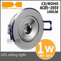 Hot sale New Cree Free shipping AC85-265V High quality Aluminum CE&RoHS Cool white/warm white 1w led ceiling lantern 10pcs/lot