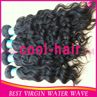 free shipping brazilian virgin hair water wave 3pcs lot natural color brazillian virgin hair weave wet and wavy brazilian hair