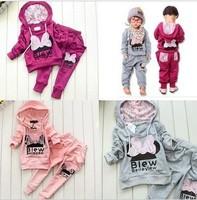 4sets/lot Cotton Baby Sports sets Hoodie Coat + Haroun pants girls /boys clothing sets cartoon clothing suits