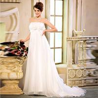 Free Shipping S1320 New Women Wedding Dress Bra Straps Large Trailing 2013 Latest