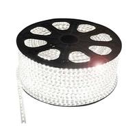 1M/5M/10M Customized Length 3528/5050 SMD 220V flexible light 60 led/m 6 color LED strip white/blue/warm Car Home decoration