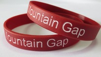 Free Shipping Custom Rubber Wristbands! 500pcs/Lot colorfilled wholesale Silicone Wristbands!