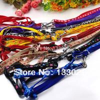 New design Pet leash harness Nylon retractable dog leash lead fashion color small medium dog cat Chihuahua Yorkshire Pitbull