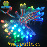 WS2801 LED pixel light RGB exposed LED string light DC5V IP66 RGB LED light module pixel  free shipping