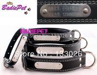 New design Dog collar pet collar luxury leather cat collar leash for smal dog maedium dog large dog free carve name letter
