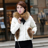 2013 Korean Raccoon Fur Collar Down Jacket Women Short Paragraph Brand New Factory Direct Wholesale Women Down Coats WDP007