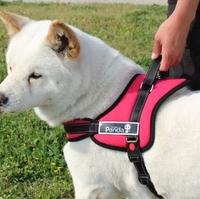 Multipurpose big Dog Pulling Training harness Husky Pitbull Large dog nylon vest durable foam pad golden retriever
