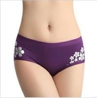 2014 fashion sexy underwear head Seamless bamboo fiber female underpants in the waist hip briefs Wholesale