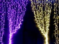Promotion! 600 LED bulbs 6M*3M Curtain LED Light , Wedding Xmas decoration , White Multi Blue , Mixed lot , Free drop shipping
