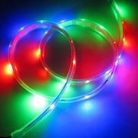 1M WS2812B Individually Addressable Color LED Strip Tube Waterproof 30 LEDs/m DC5V